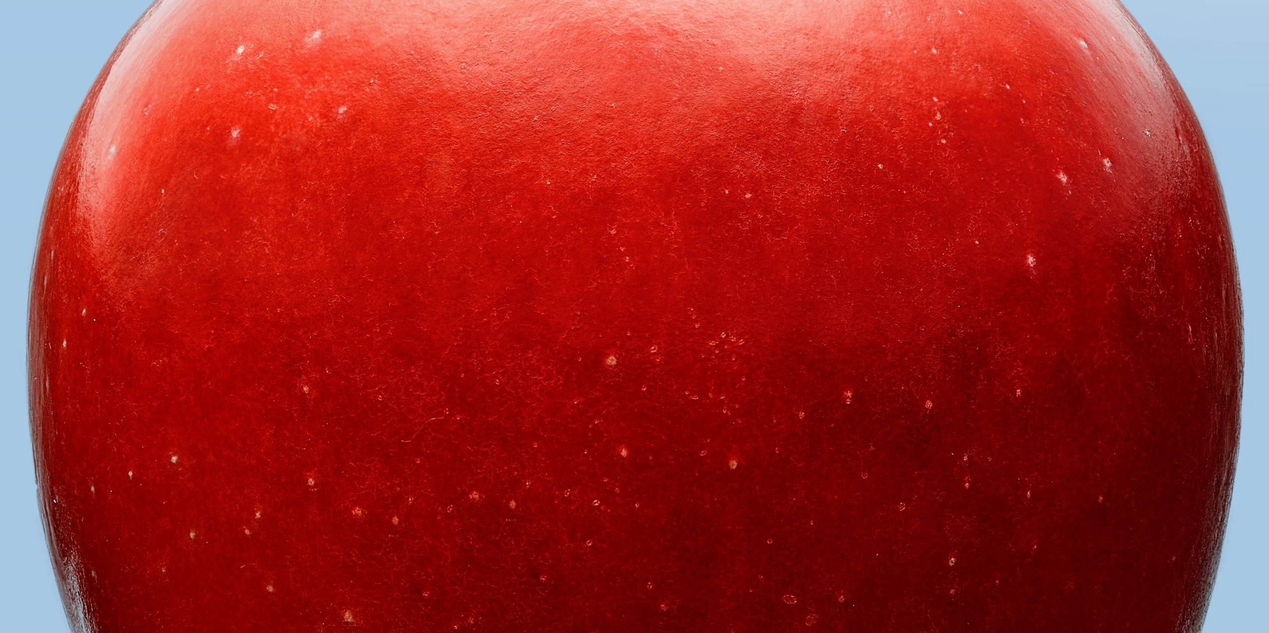 snack apple | miniature apple | rockit